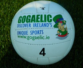 'The Irish Times' recommend Go Gaelic